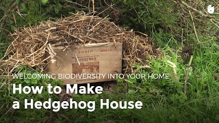 How to Make a Hedgehog House | Biodiversity