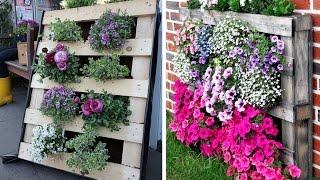 видео Вертикальное озеленение на даче + фото