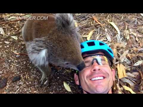 Indian Pacific Wheel Race 2018 & How Im Training For It