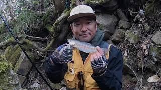 待ちに待った渓流釣り解禁! ちょいと出遅れましたが、4月12日。今期の一釣目行ってまいりました。ピーカンクリアウォーターで渋い釣りとなりましたが、綺麗なヤマメちゃん ...