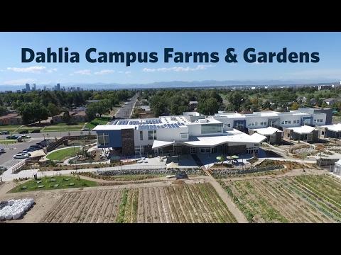Dahlia Campus Farms and Gardens