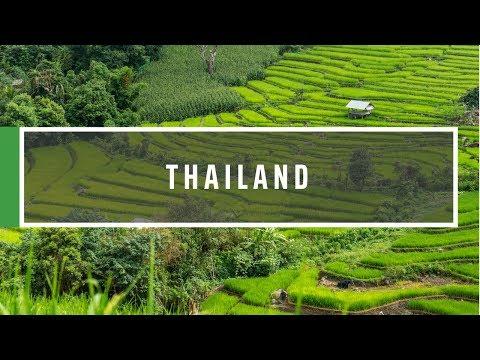 GVI - Thailand