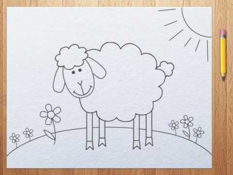 How to draw a sheep - photo#18