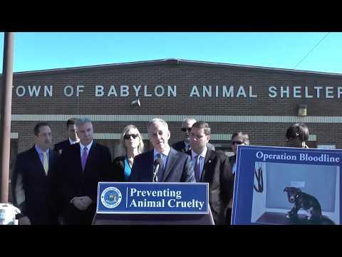 Preventing Animal Cruelty