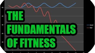 The Fundamentals of Fitness