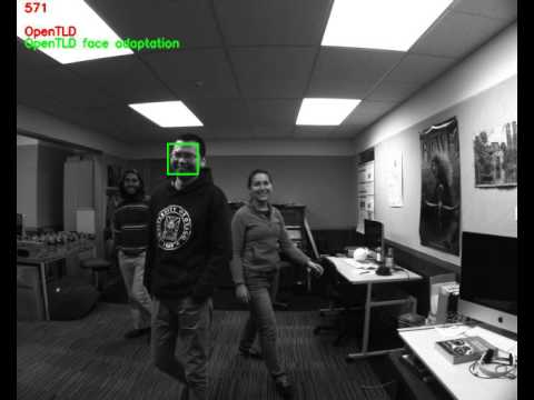 Adapting the OpenTLD tracking algorithm for tracking faces