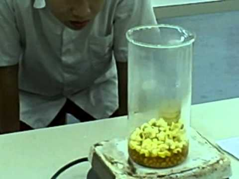 Maxwell Distribution Popcorn Experiment