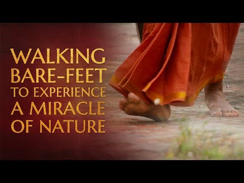 Walking Bare-feet on the Ground to Experience a Miracle of Mother Earth