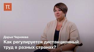 Труд в эпоху глобализации - Дарья Черняева