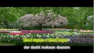 afghan karaoke, man lalai azadam