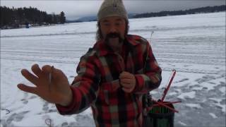 JIGGING UP FRESH WATER SMELT THROUGH THE ICE...