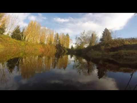 Sammamish River Fall Reflections