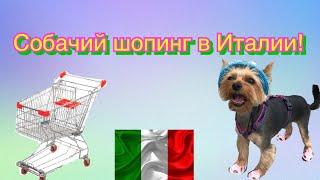 Огромный зоомагазин в Италии//Собака на шопинге в Италии//Покупки из зоомагазина