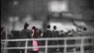 Nicole Atkins & The Sea — Neptune City