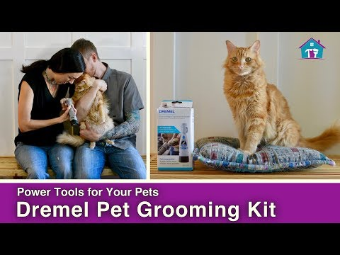 Power Tools for Your Pets // Dremel Pet Groomer