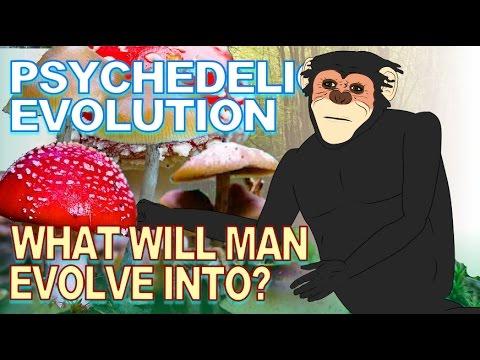 Stoned Ape Theory: Human Evolution