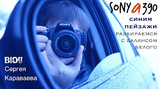 Sony a390 - синим пейзажи разбираемся с балансом белого