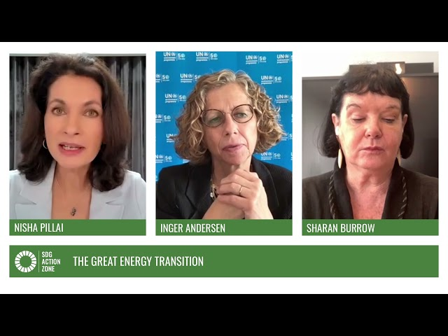 Panel – The Great Energy Transition
