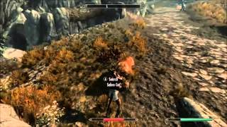 Skyrim Gameplay Killing a Sabre Cat with just fists