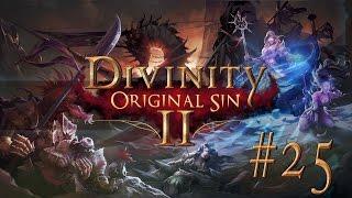 Divinity Original Sin II #25 TROMPDOY RIDDLE - Let's Play