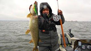 О такой рыбалке можно только мечтать Щука с каждого заброса Рыбалка на дедовские снасти