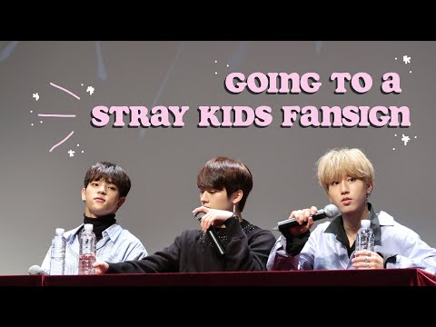 my first ever stray kids fansign experience