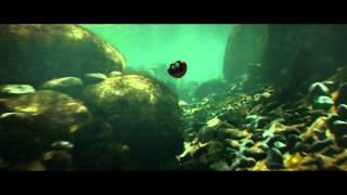 Букашки - Приключение в Долине муравьев