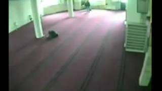 Ngintip ABG Ciuman Dan Remas Toket Di Masjid (akhirnya Di Gerebeg) - Baca Deskripsi -