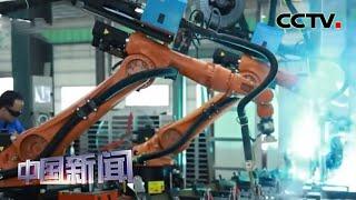 [中国新闻] 新闻观察:工业八成行业利润改善 | CCTV中文国际