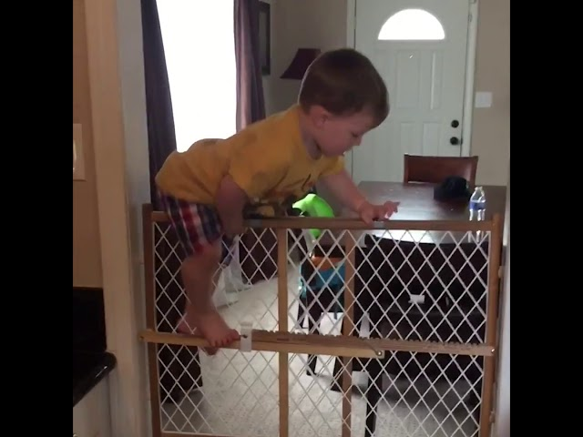 Smart Babies vs Child Proof - - #FunnyVideos #Funny #FunnyVideo #1