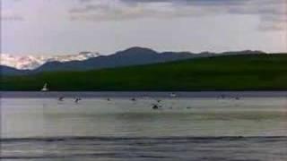 Re: [www.aiyoo.org] Fanna - chand sifarish - Hindi movie song