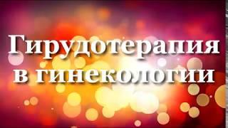 Гирудотерапия в гинекологии, лечение пиявками бесплодия, пиявки  миома матки, пиявки  эндометриоз
