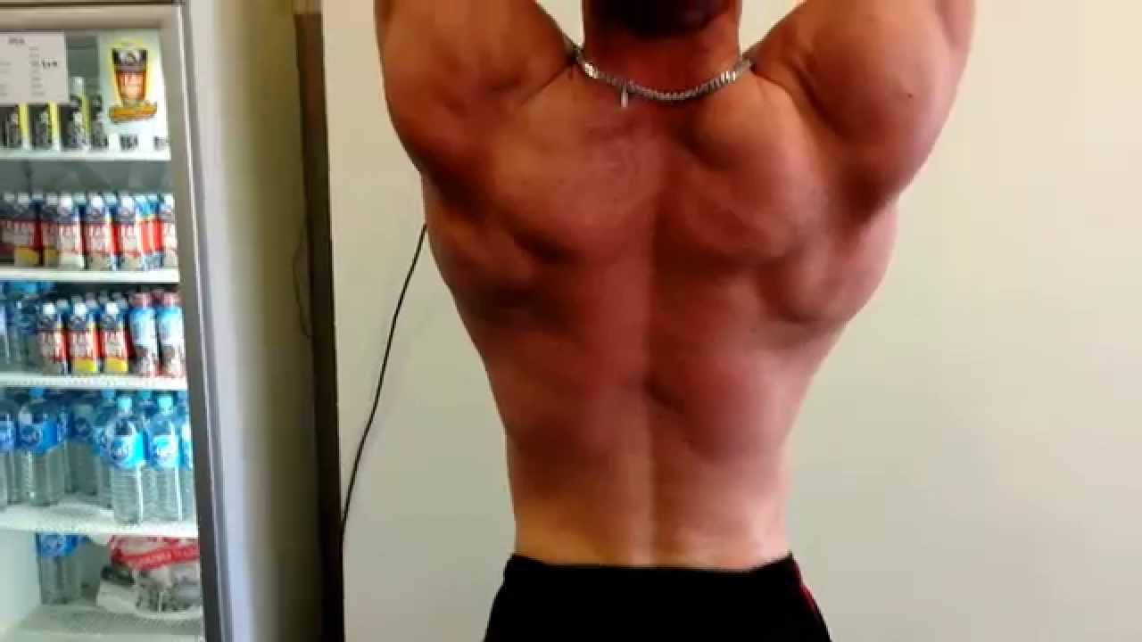 Bodybuilder Back And Biceps Muscle Flex Lat Pulldown Benedikt