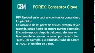Forex Basico y Prospetación Basada en Gopro   Network Marketing con Marcela Carrera