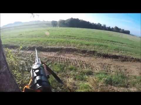 Chasse En Battue Dans Les Vosges : Sanglier/cerf/chevreuils