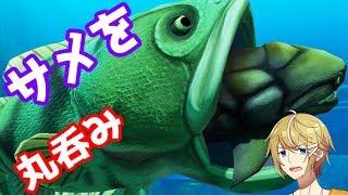 【神ゲー】海の頂点に立つわ【Feed and Grow Fish】
