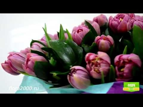 Букет с доставкой Москва, Питер, Россия. Букет Зайке - цветы для нежной девушки, flora2000.ru