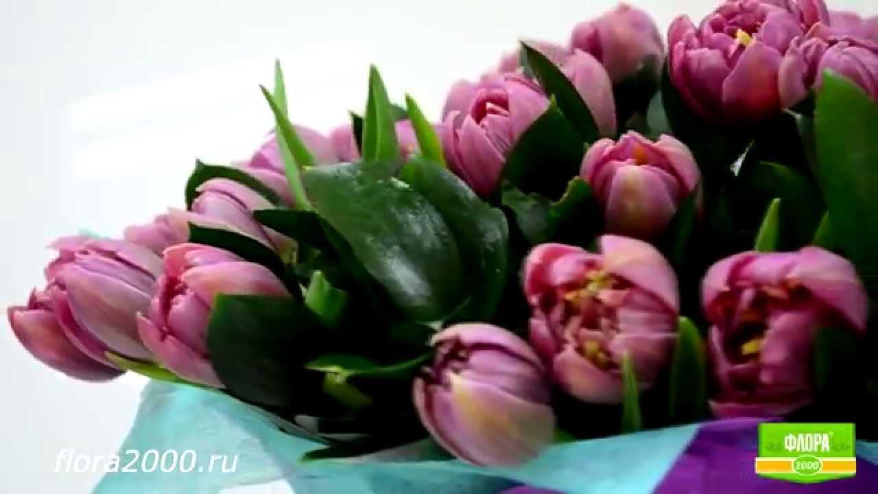 Цветы с доставкой в пит элитные букеты с доставкой