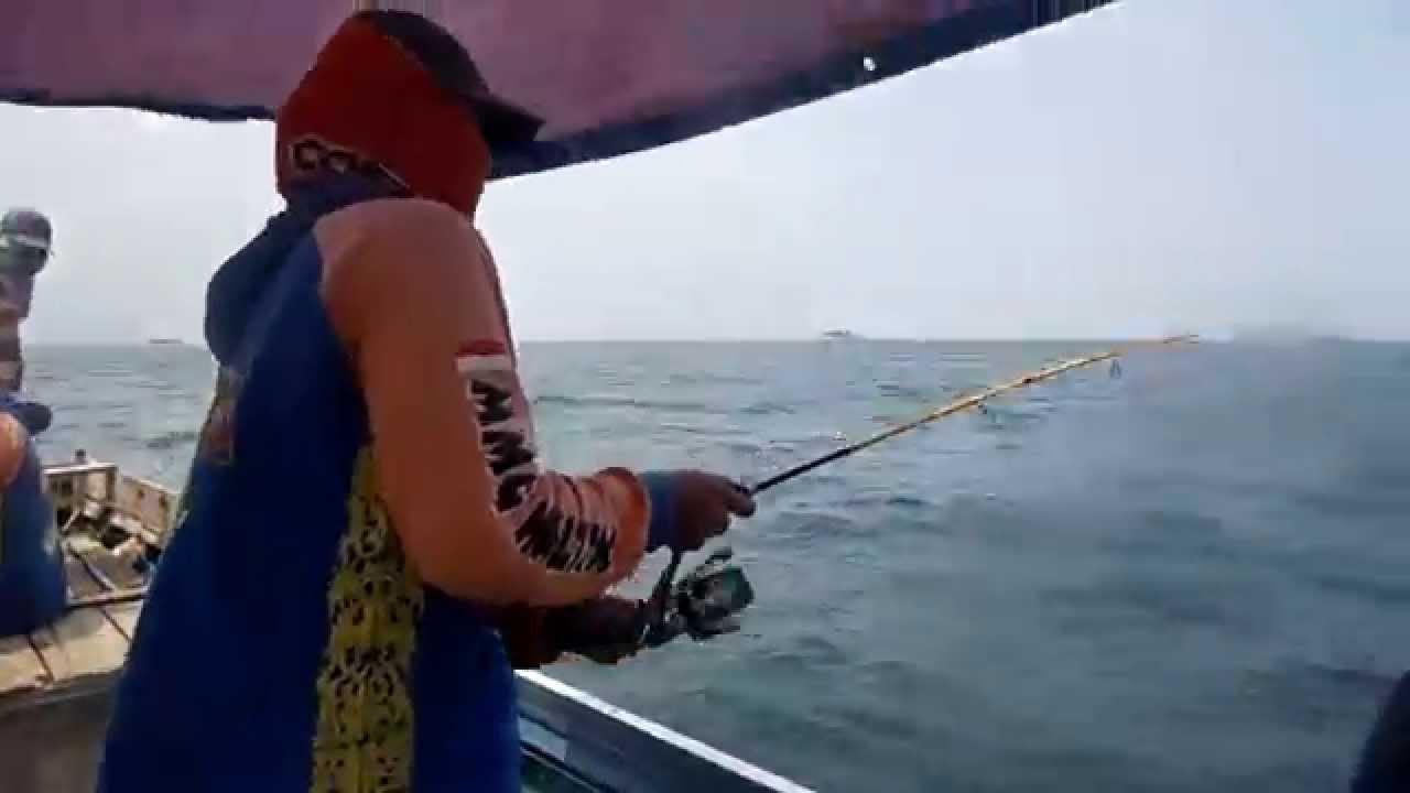 Memancing Ikan Gerut-Gerut Di Laut Muara Badak - YouTubeBadak Laut