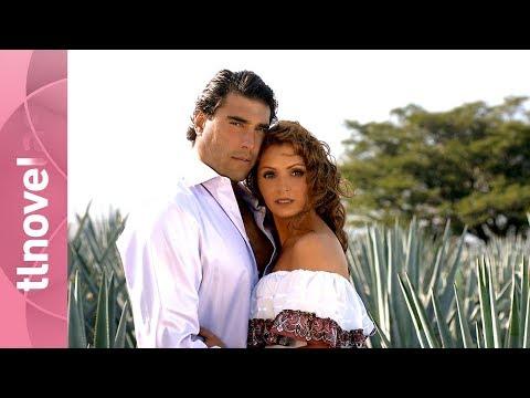Destilando amor: Trailer | 5 de octubre por Tlnovelas