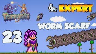 Terraria 1 3 Expert Let 39 s Play WORM SCARF 23