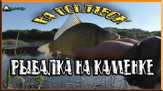 рыбалка на поплавок на реке Каменка/рыбалка летом в июне/рыбалка 2018/ловля карася/