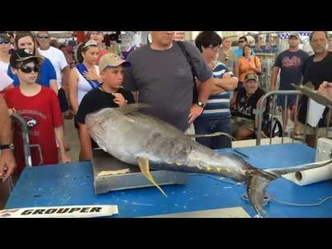 Young Anglers Make Big Catches At Mississippi Deep Sea Fishing Rodeo