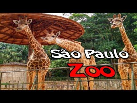 Zoológico de São Paulo