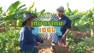เกษตรไทยไอดอล | EP.50 ตอน การจัดการเกษตร 8 ก.พ. 59