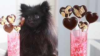 Valentines Day Treats FOR DOGS! | Safe Chocolate for Dogs | DIY Dog Treats | Homemade Dog Treats