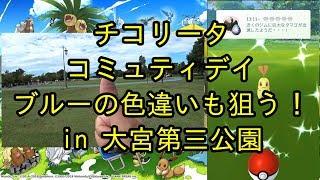 【ポケモンGO】チコリータコミュ、ブルーの色違いも狙う一石二鳥作戦! 前半 in 大宮第三公園