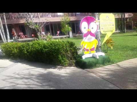 Orchid resort and spa 4* karon beach, room ( отель орхид резорт, пляж карон, комната )