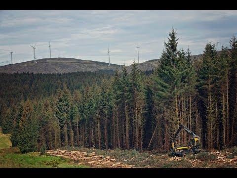 PONSSE forest machines logging in UK