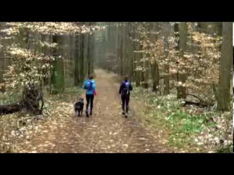 Trail Running Twins at Mohican State Park